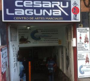 entrada Cesaru Laguna - Tenerife