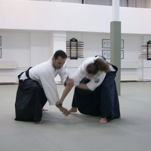 Seminario de Aikido en Moscú 2014