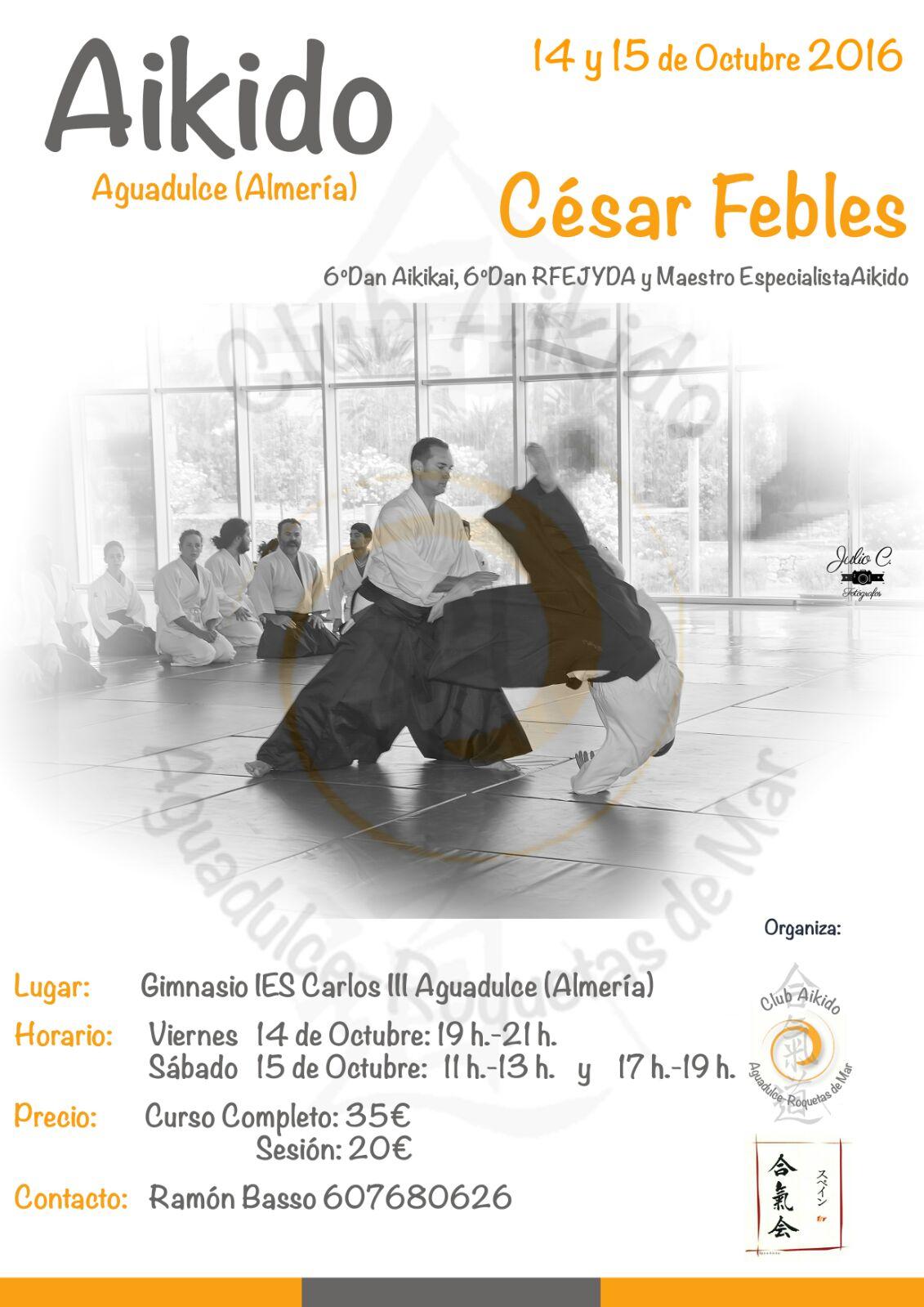 Curso de Aikido de César Febles en Almería 14 y 15 octubre 2016