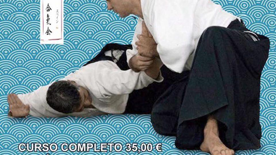 aikido-2017