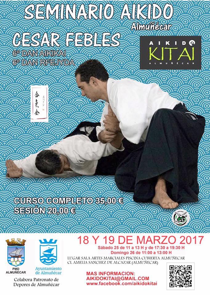Seminario aikido Almuñecar César Febles 2017