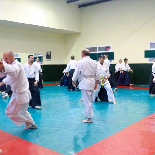 Seminario de Aikido en Madrid – Meco Abril 2016