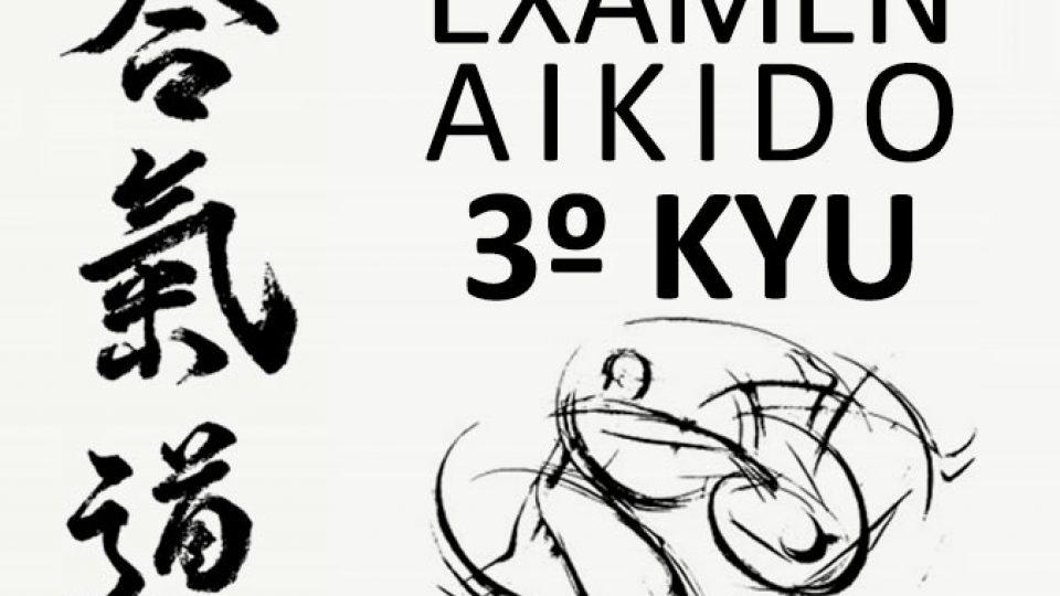 Exámen Aikido 3º Kyu