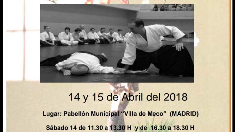 curso aikido madrid 2018