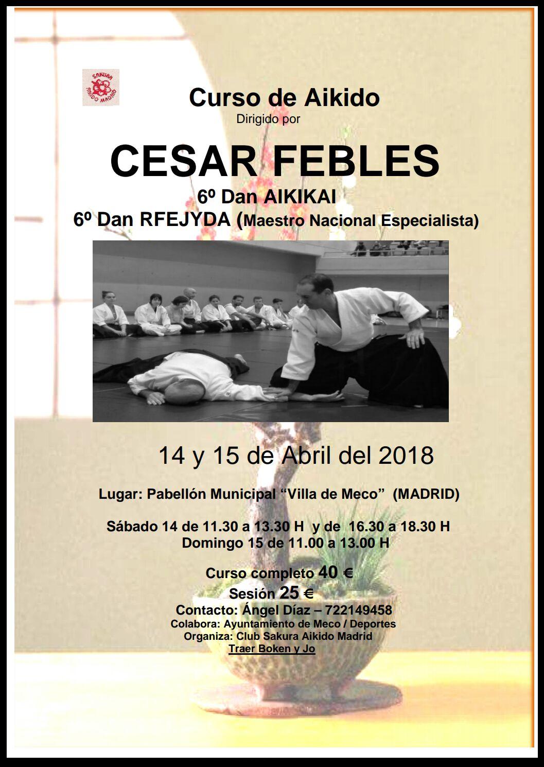 Curso de aikido en Madrid a cargo de César Febles 6º Dan Aikikai - 25 y 26 de marzo 2017